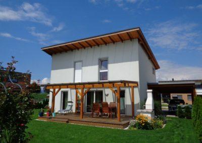 Dali Meistermaler Fassadengestaltung Einfamilienhaus 01