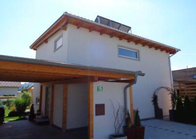 Dali Meistermaler Fassadengestaltung Einfamilienhaus 04