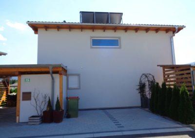 Dali Meistermaler Fassadengestaltung Einfamilienhaus 05